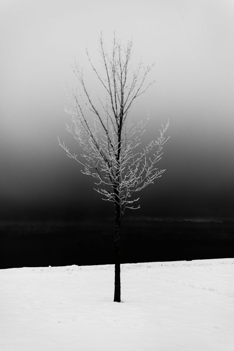 """Paint of Winter"" - a photo by Eirik Jeistad"